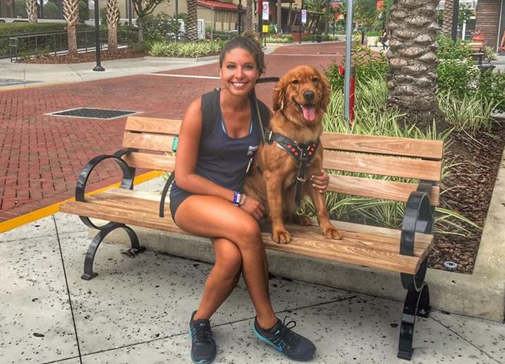 Orlando Dog Trainers